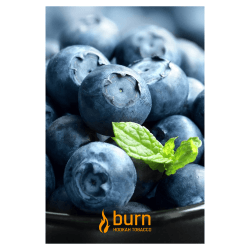 Табак Burn - Blueberry Mint (Черника и Мята, 100 грамм)