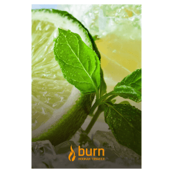 Табак Burn - Lemon Mint (Лимон и Мята, 100 грамм)