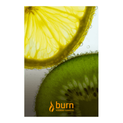 Табак Burn - Kiwi Lemon (Киви и Лимон, 100 грамм)