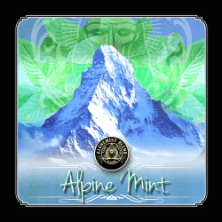 Табак Alchemist Original - Alpine Mint (Альпийская Мята, 350 грамм)